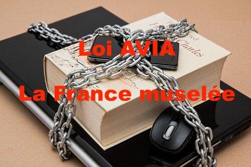 LOI AVIA : LA FRANCE MUSELÉE