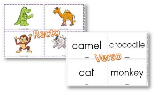 Anglais - Flashcards animals