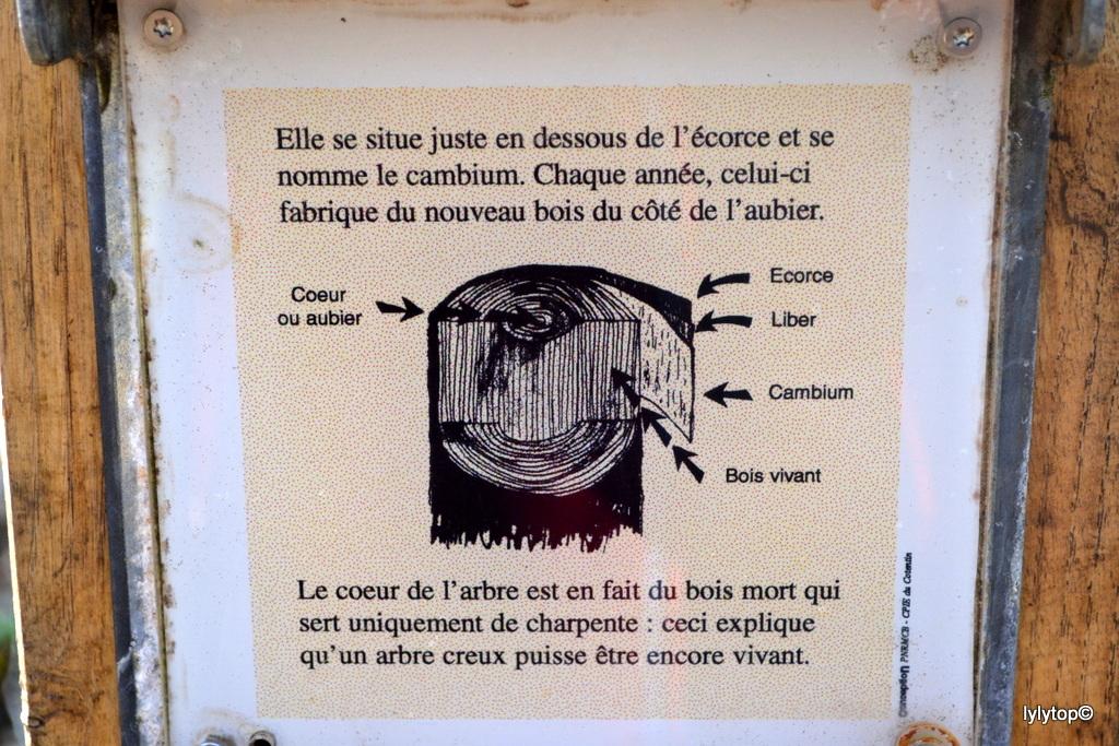 SAINT-PATRICE-DE-CLAIDS