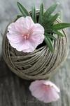 bobine fil + fleurs