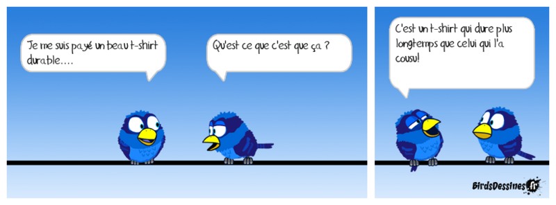 Les birds ..... du samedi.