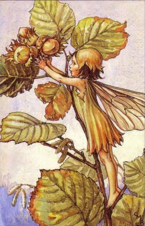 Mon freeforme d'octobre : fruits d'automne