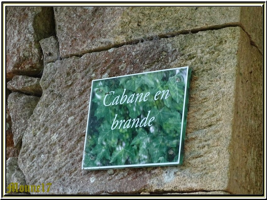 Jardins de Marqueyssac (suite)