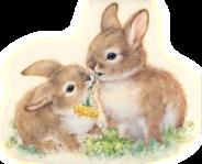 gifs lapins