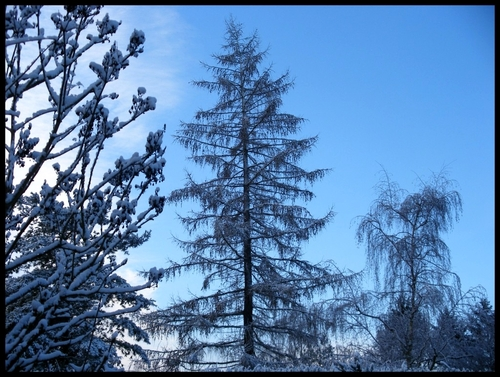 L'hiver est à nos portes ...