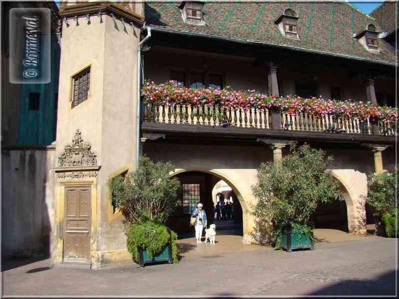 Alsace Haut-Rhin Route des Vins Colmar le Koïfhus