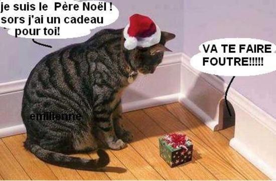 chat cadeau souris
