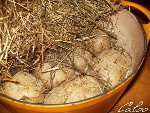 Pommes de terre au foin