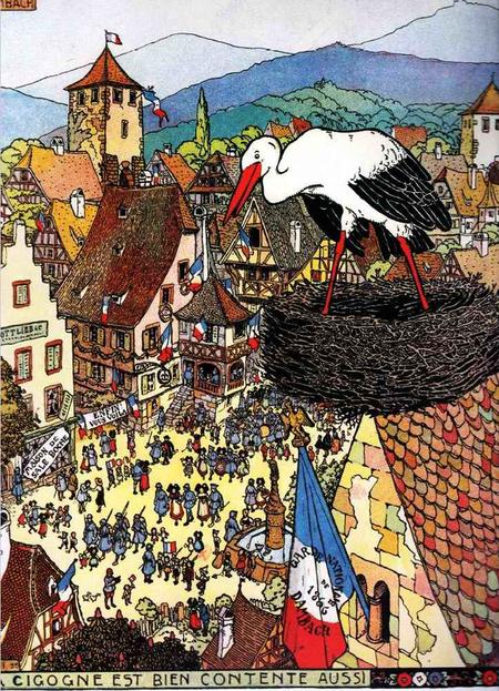 Les cigognes et l'Alsace