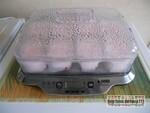 Yaourts saveur fraise sur lit de confiture cerise