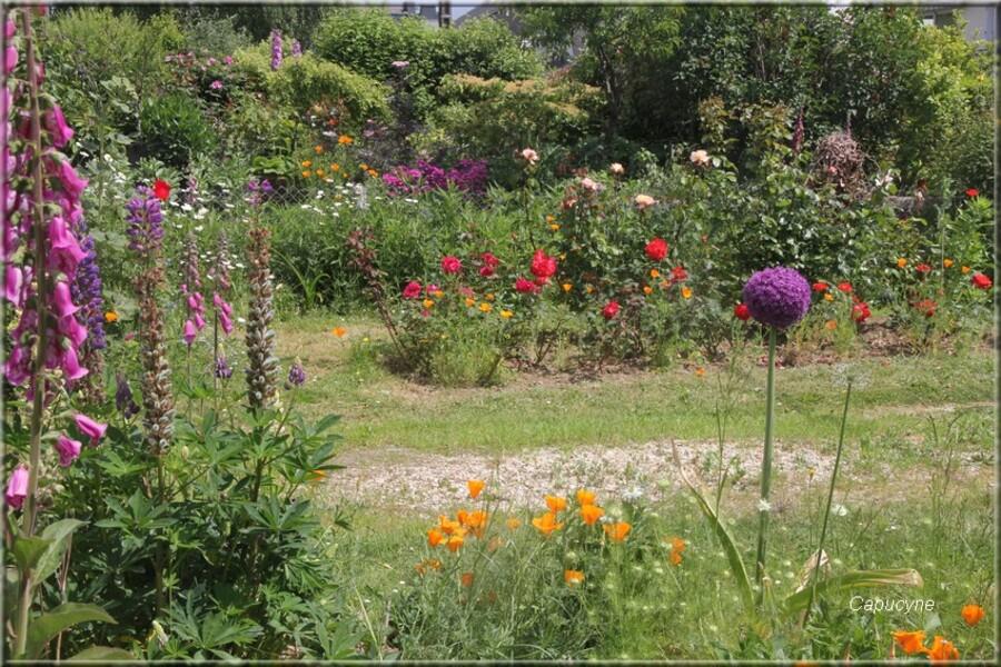 Le jardin fleuri en mai