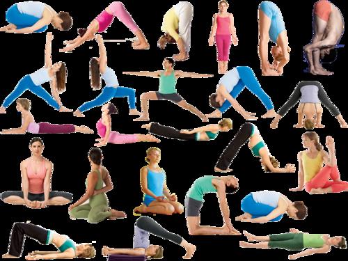Yogactif