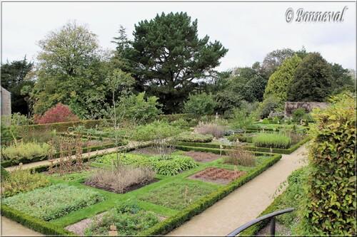 Abbaye de Daoulas Finistère plantes aromatiques et médicinales dans le jardin