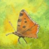 Expo-de-peinture--Jardin-sensoriel-STRASBOURG--Mai-copie-1