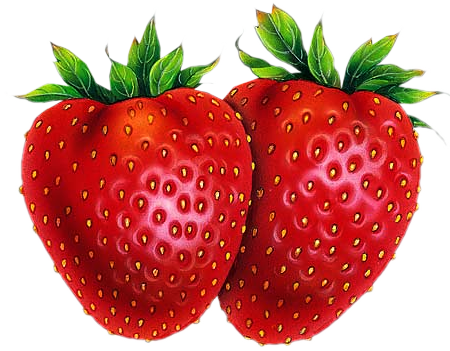fraises la passion des tubes psp clipart elvis singing to a woman clip art elves ears