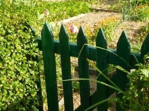 Jardins-familiaux-0007.jpg