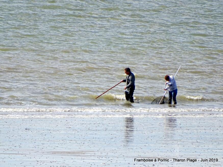 Journée d'été à Tharon plage  (44)