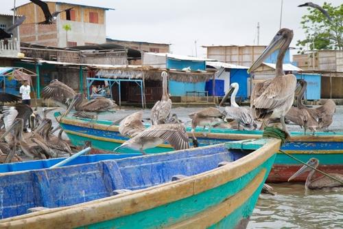 Puerto Pizzaro, dernier port avant l'Equateur