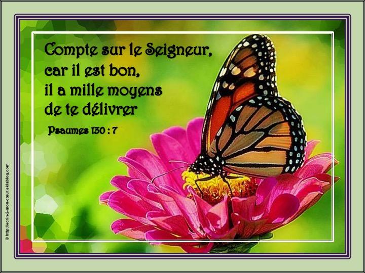Le Seigneur est bon et a mille moyens de te délivrer - Psaumes 130 : 7