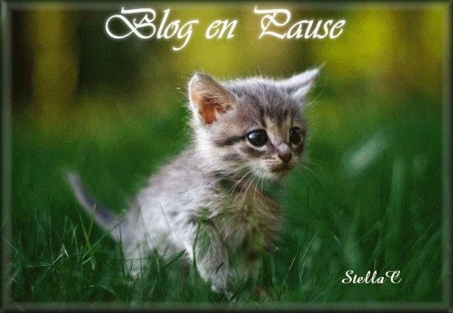 pr mon blog 14-06-2017