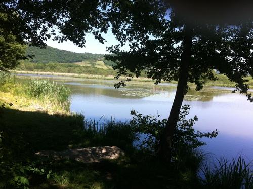 L'étang de charamel