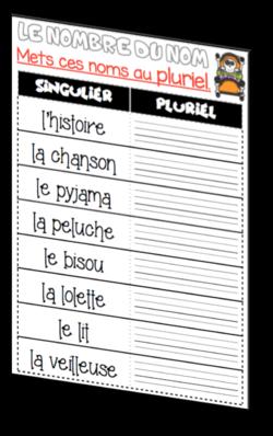 Singulier - Pluriel (7)