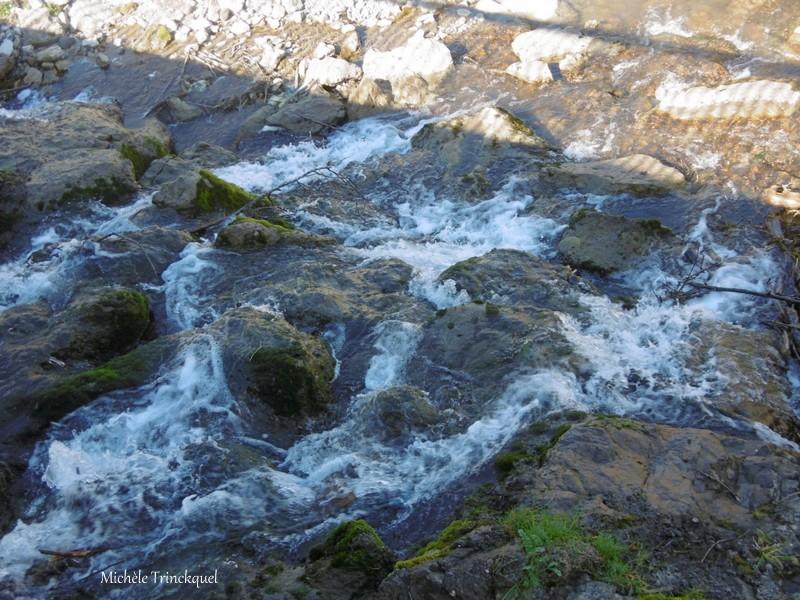 Une balade au Lac d'ORTHEZ (64), le 20 février (suite n° 3...et fin)....