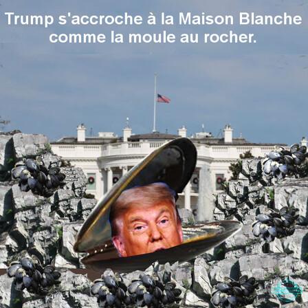 Trump s'accroche
