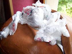 Des sacs à crottes...