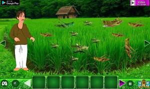 Jouer à Save the farmer land