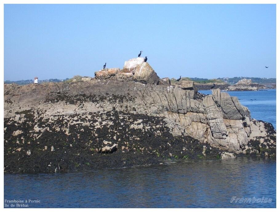Île de Bréhat Côtes d'Armor
