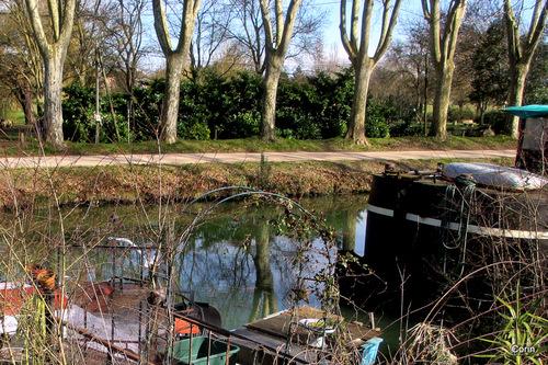 Au bord du Canal du Midi ... (1)