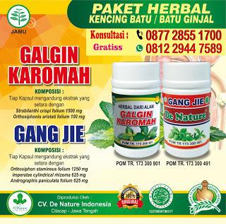 obat ginjal generik yang direkomendasikan oleh dokter rumah sakit