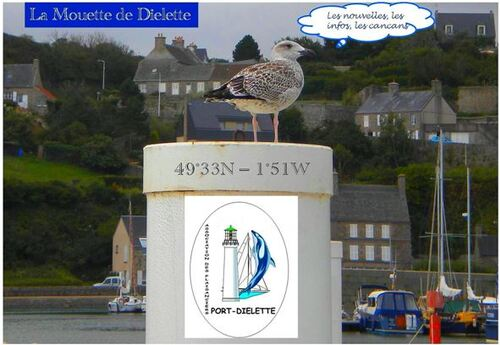 Dernières nouvelles de Port-Diélette !