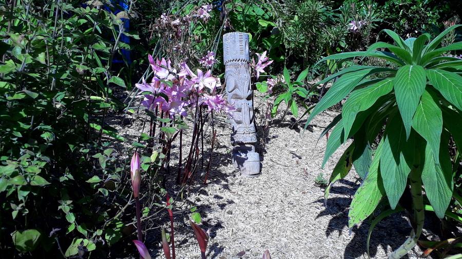 jardin exotique de Roscoff (fin )