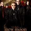 Official-Movie-Poster-the-volturi-8382691-690-1023.jpg