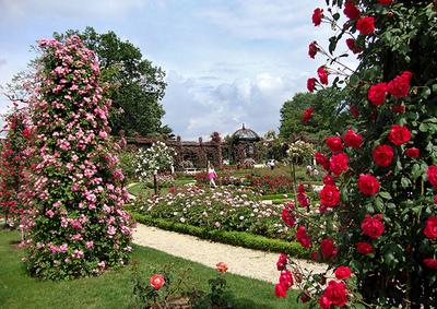 Blog de lisezmoi :Hello! Bienvenue sur mon blog!, Val de Marne :L' Hay-les-Roses