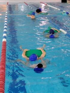Grille d'évaluation natation