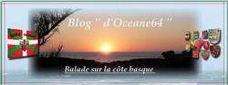 Mes amis(es) de la blogosphère