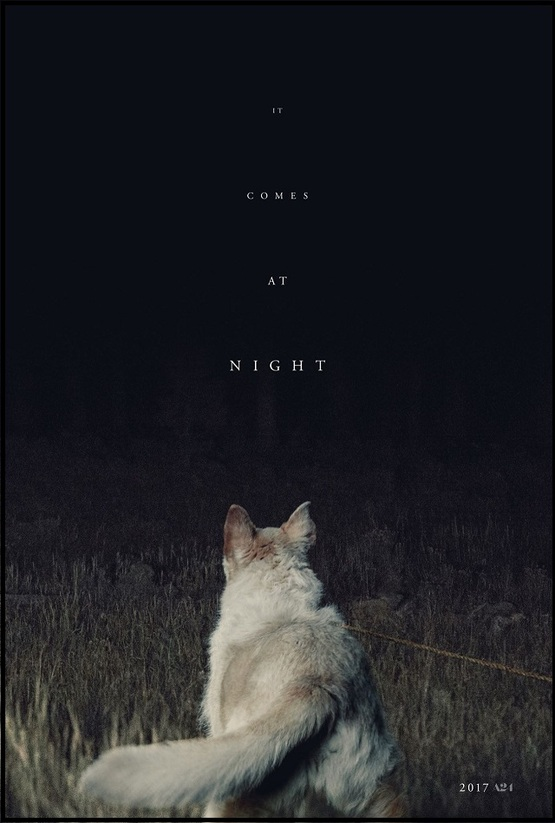 [Critique] It comes at night