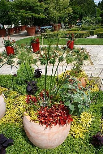 Arboretum20110006