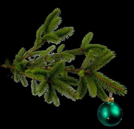 Tubes branches sapin de Noël 4