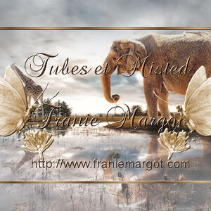 Mes tubes - Animaux