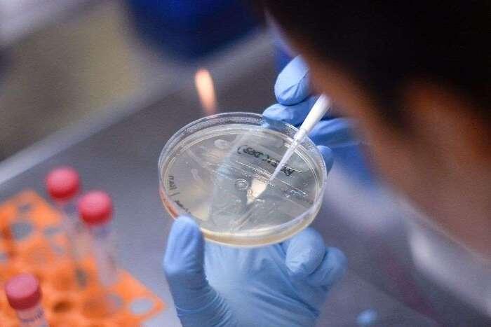 Coronavirus : des chercheurs suisses seraient sur le point de proposer un vaccin