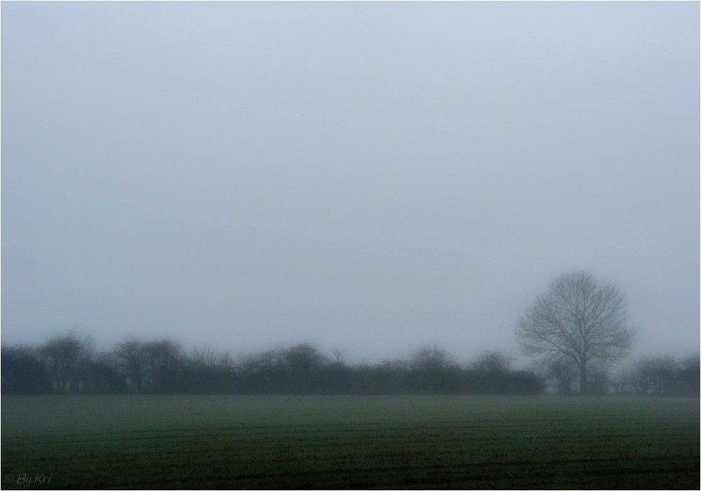 Le brouillard ...