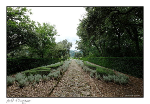 Jardins suspendues de Marqueyssac