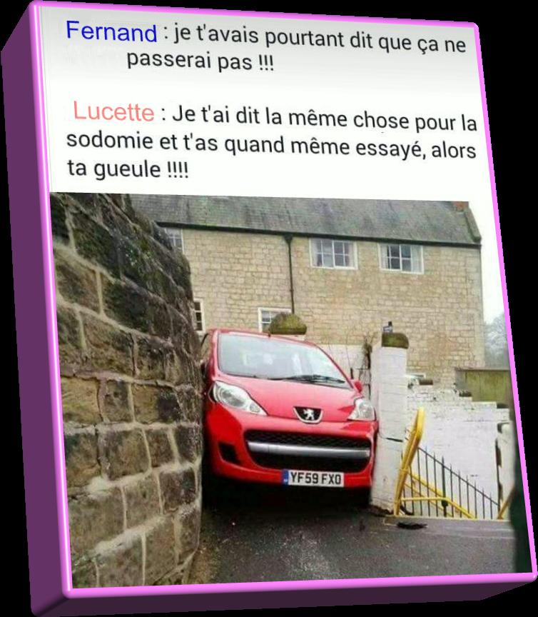 Pauvre Lucette!!!(Humour)