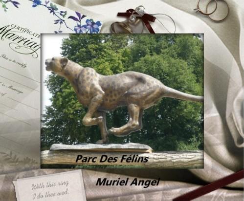 parc-des-felins75-copiry-Ma.JPG