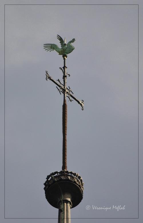 Notre-Dame de Paris : Du coq à l'âme !