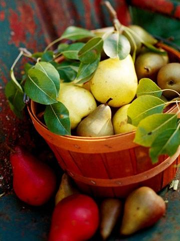 Calendrier des fruits